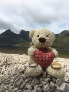 Travel bear with our rings - Dove Lake