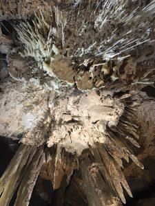 Stalctites, Marakoopa Caves, Tasmania