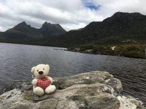 Travel bear & Cradle Mountain